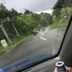 北海道,クマは出ますか? はい、出ます!このまえ道路で見ました,クマ、対策