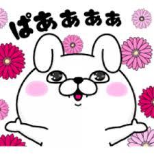 市岡愛弓,STU48,180731,あゆみん,SHOWROOM