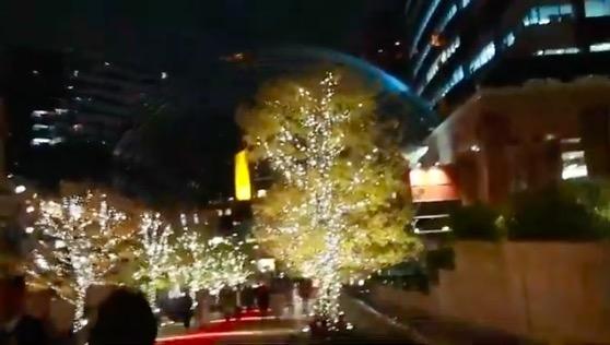 恵比寿ガーデンプレイス,イルミネーション,クリスマスツリー,1811,東京