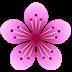 つづら尾崎、桜、見頃、滋賀県、ドーロンで空撮してきた